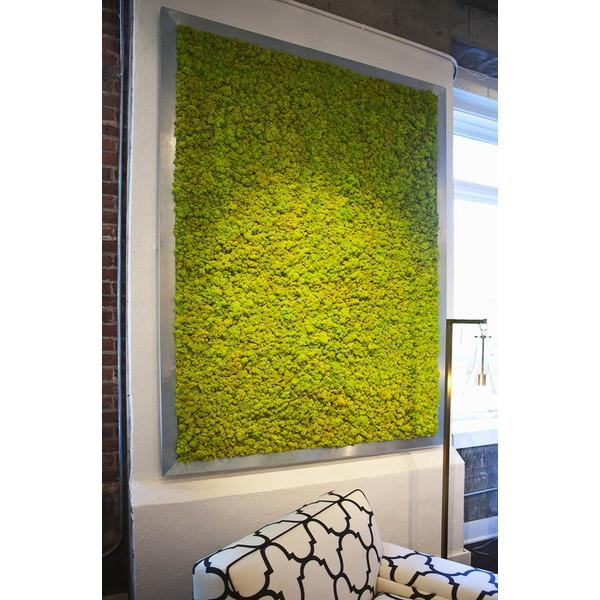 Giant Moss Plaque Wall Art  KRISLYN Wall Decor