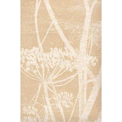 Cow Parsley Flower Wallpaper White/Beige Lee Jofa Wallpaper - 6