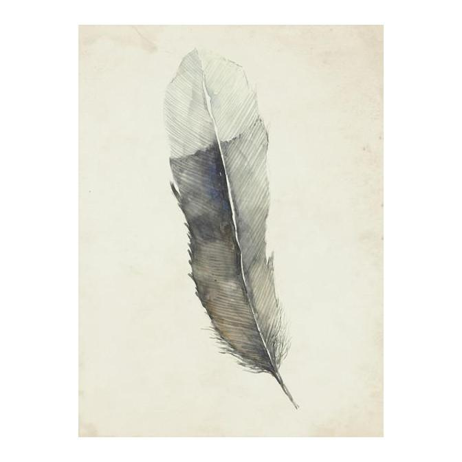 Charcoal Feather 2 Wall Art 20 x 27 in Leftbank Art Wall Decor - 1