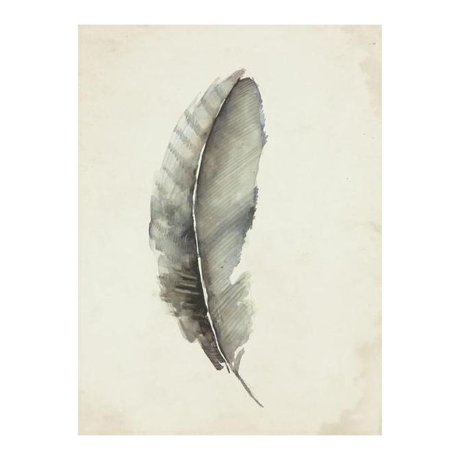 Charcoal Feather 3 Wall Art 20 x 27 in Leftbank Art Wall Decor - 1