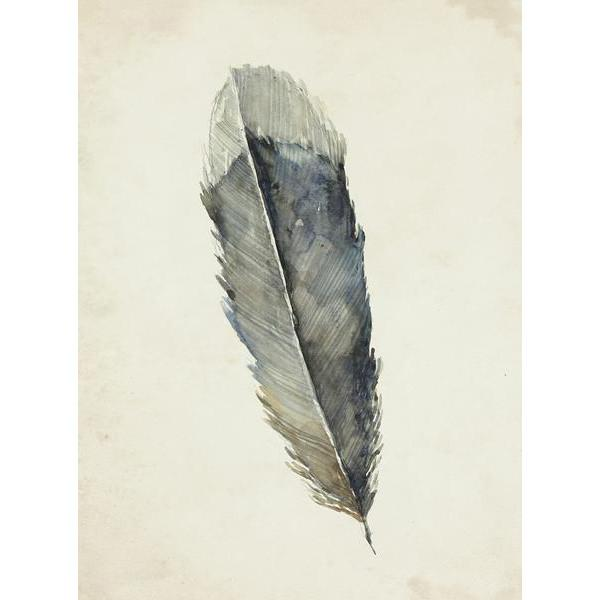 Charcoal Feather 1 Wall Art 20 x 27 in Leftbank Art Wall Decor - 1