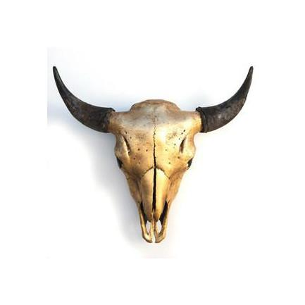 Bison Skull Gold Owen Mortensen Wall Decor - 3