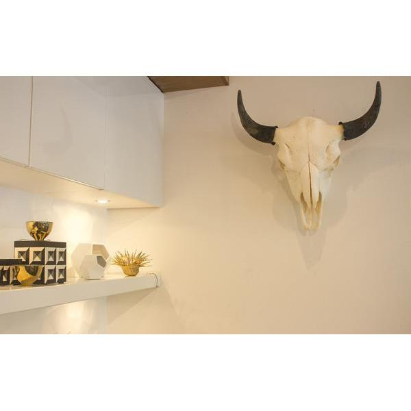 Bison Skull  Owen Mortensen Wall Decor - 8