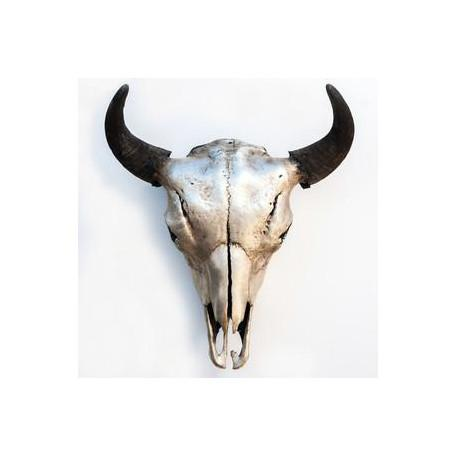 Bison Skull Silver Owen Mortensen Wall Decor - 6