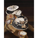 Petrified Wood Trays  ROOST Accessories - 3
