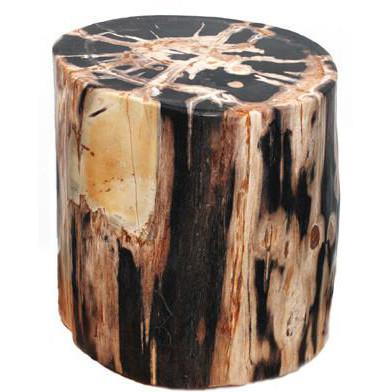 Petrified Wood Stool  ROOST Side Table - 1