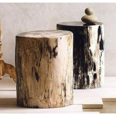Petrified Wood Stool  ROOST Side Table - 2