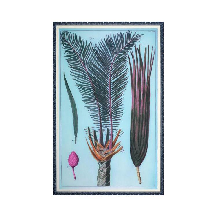 Palm Family Wall Art  Rosenbaum Fine Art Wall Decor