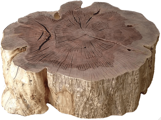 Organic Stump Coffee Table  VANILLAWOOD Unknown - 1