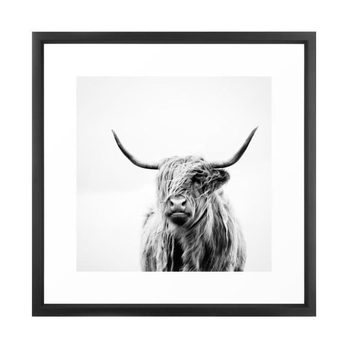 Highland Cow Framed Wall Art Wall Decor Society 6