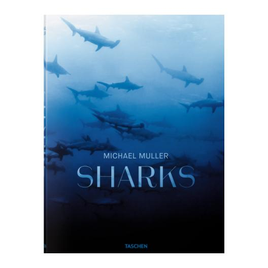 Michael Muller Sharks Coffee Table Book Coffee Table Books Taschen