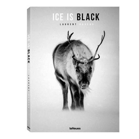 Ice Is Black Coffee Table Book Coffee Table Books TeNeues