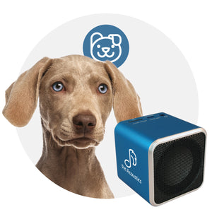 Pet Tunes Calming Canine Bluetooth Speaker and Music