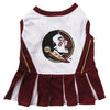 Cheerleader Outfit - College Teams