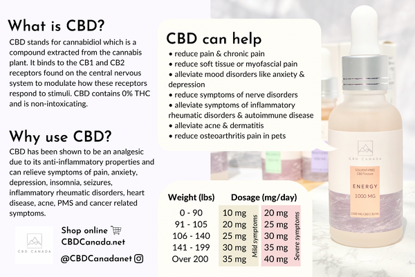 how much cbd to take dosage