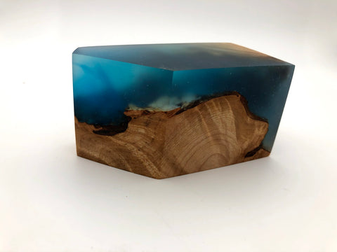Burl and Resin Paperweight
