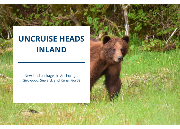 Mush into a Different Side of Alaska with UnCruise Adventures' New Land Tours