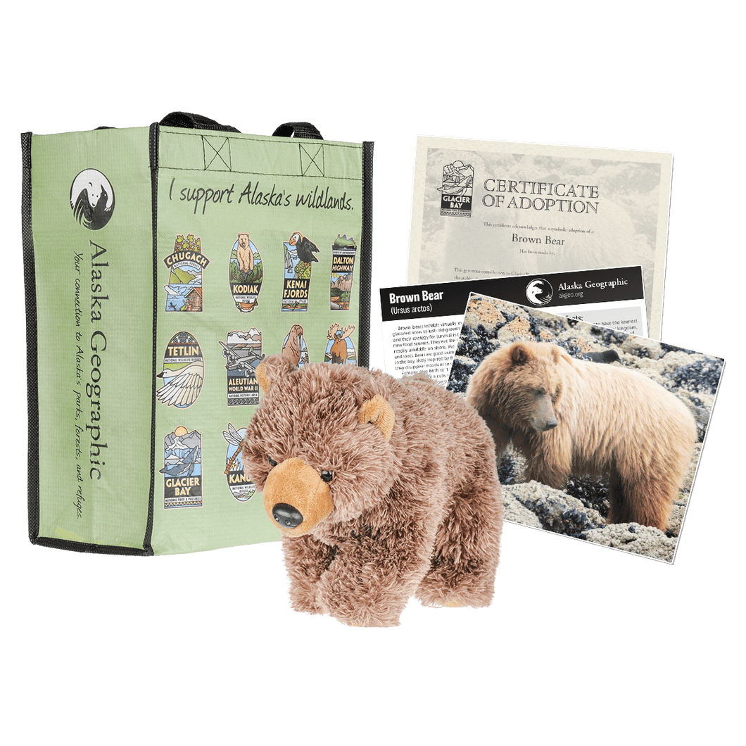 Photo of kit, including plush bear, adoption certificate, photo, and a recycled bag