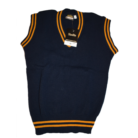 Navy Blue & Gold Pullover