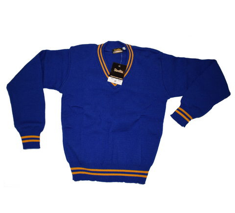 Royal Blue & Gold Jersey