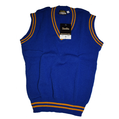 Royal Blue & Gold Pullover
