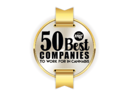 50 Best Companies To Work For In Cannabis