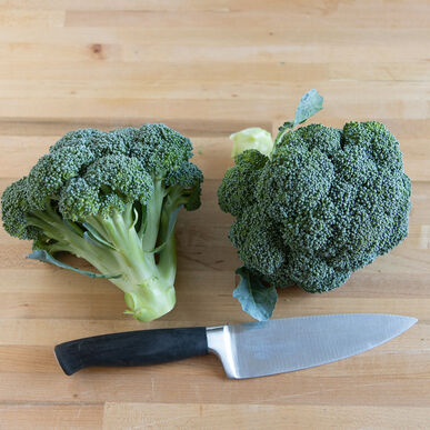 Broccoli 'Eastern Magic' (6-Pack)