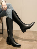 Autumn Plus Fleece Pointed Toe V Boots