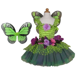 Fairy Dress & Wings