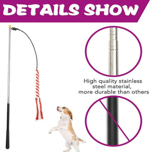 Dog , Interactive Flirt Pole - with 1 Plush Squeaky Toy