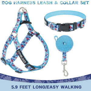 Cute Flower Pattern No Pull Dog Harness With Leash Set