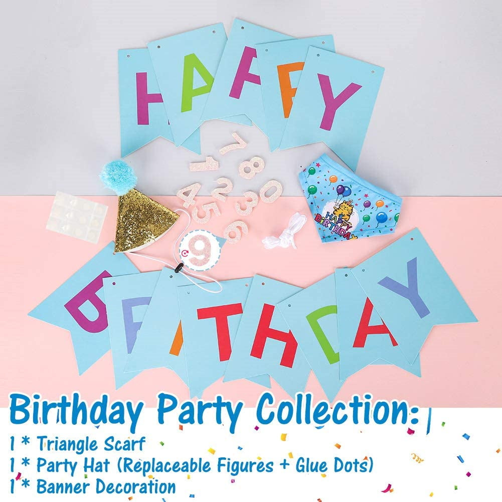 Cat Birthday Bandanna Hat Banner Set - Blue