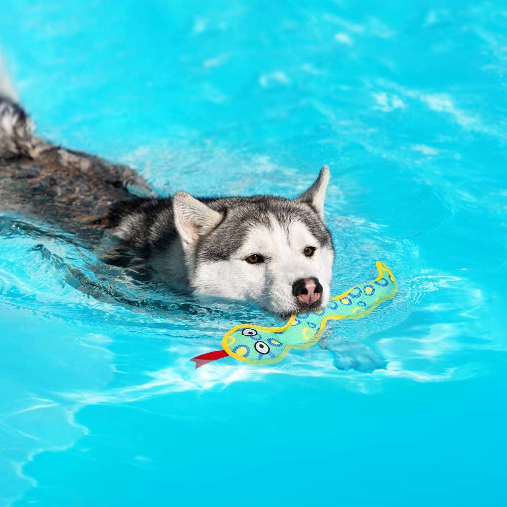 Floating Dog Water Toys - 2 Pack Dog Squeaky Toys