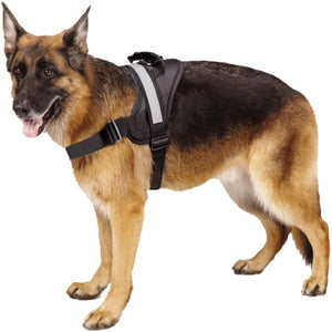 REFLECTIVE No Pull Dog Harness