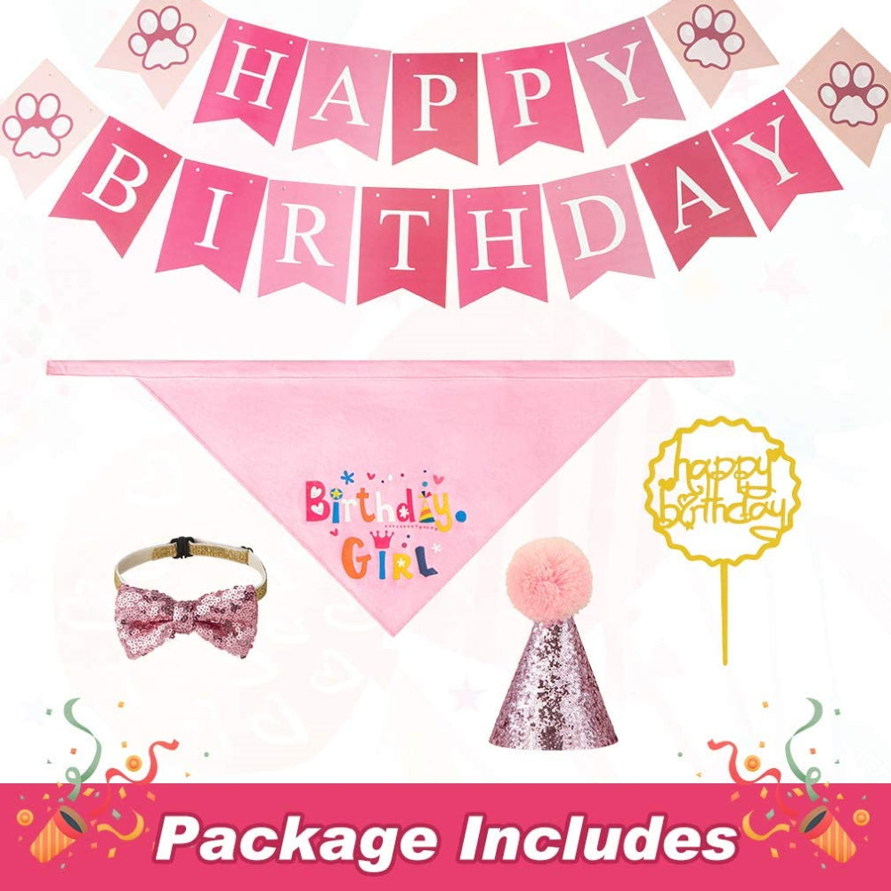 Pet Birthday Bandana with Hat Set  for Girl