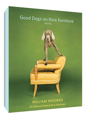 Good Dogs on Nice Furniture Notecard Set