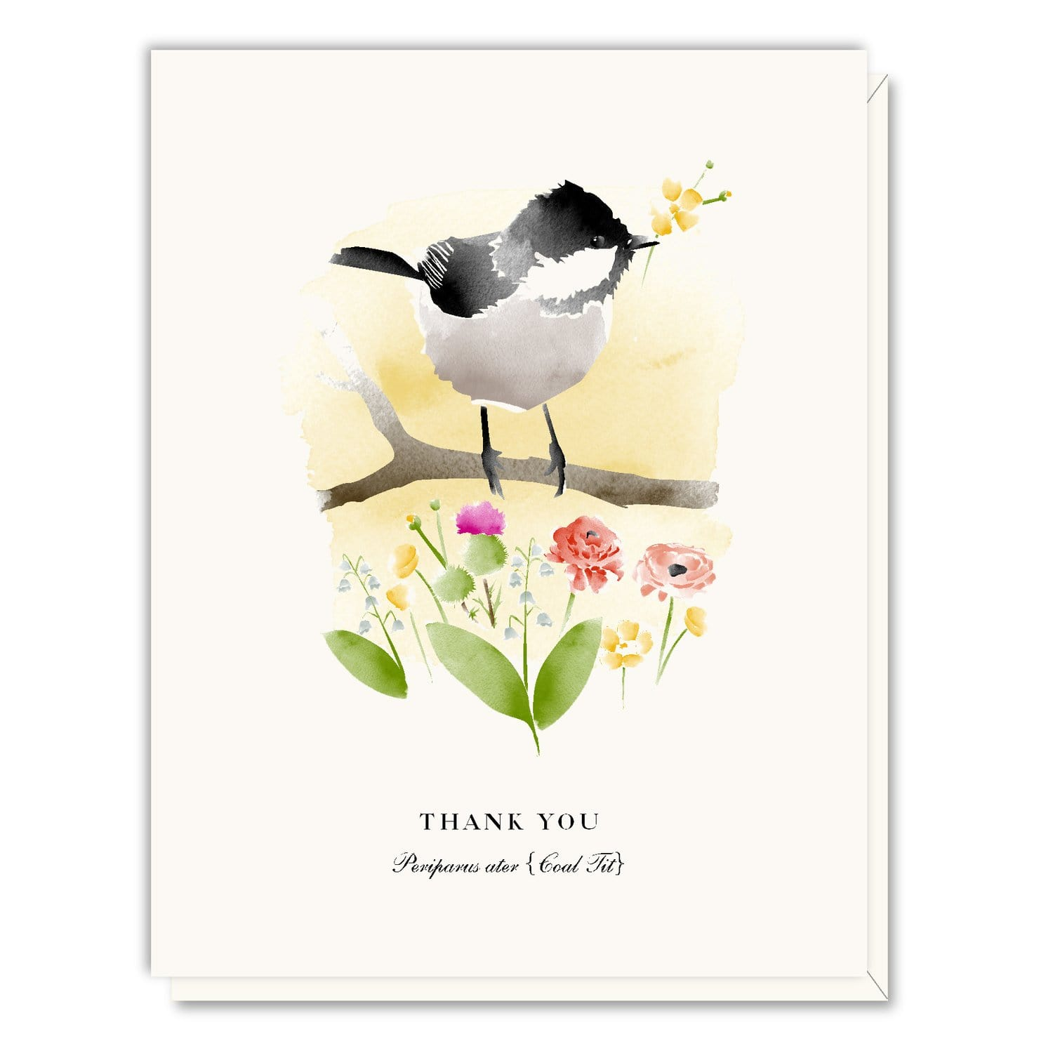 Thank You Coal Tit