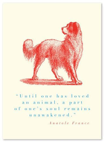 Animal Quote Dog (Anatole France) Card