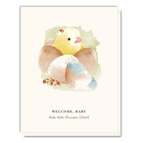 Welcome Baby Chick Card