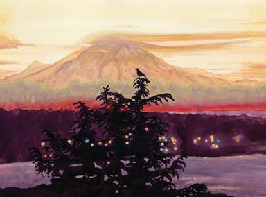 Bird's View of Mt Rainier Boxed Set