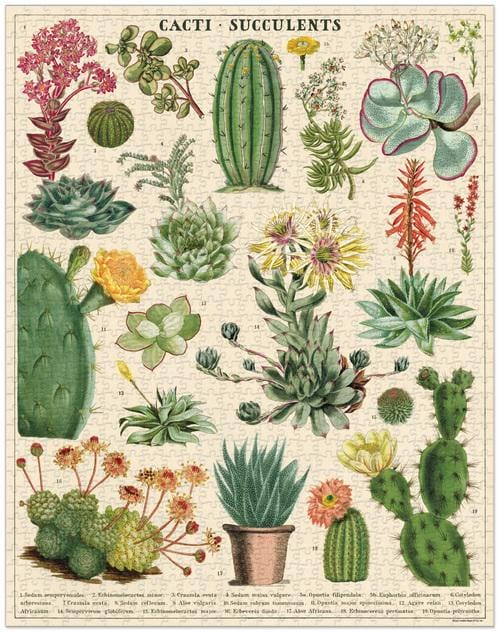 Cavallini & Co Cacti & Succulents 1000 Piece Puzzle