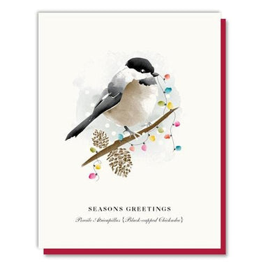 Party Lights Chickadee Boxed Card Set