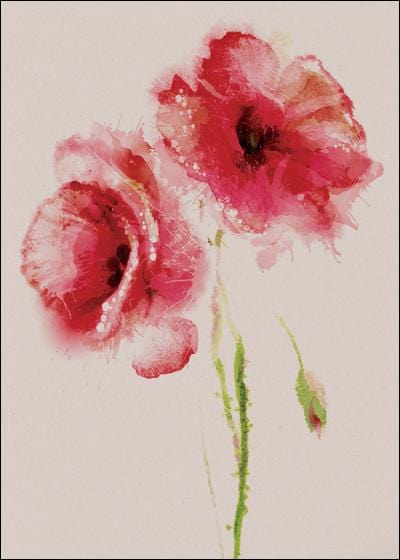 Two Red Poppies Single Card