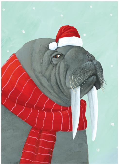 Walrus Scarf Boxed Cards