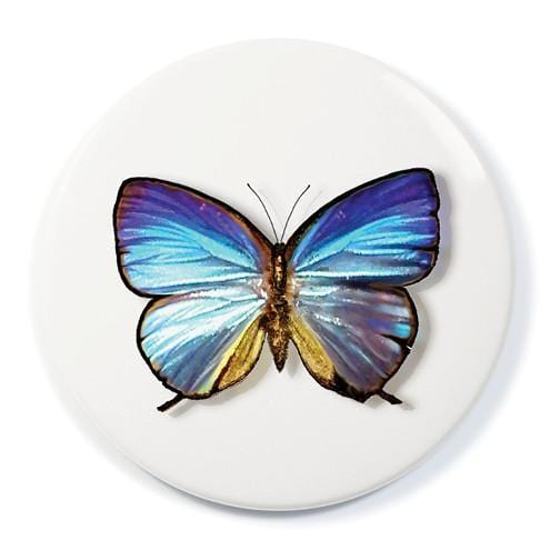 Blue Morpho Butterfly Pocket Mirror