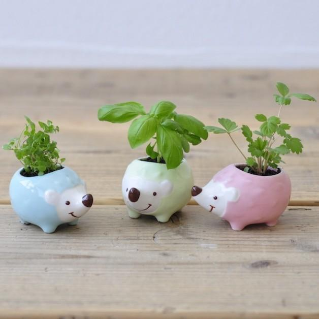Hedgie Green Planters