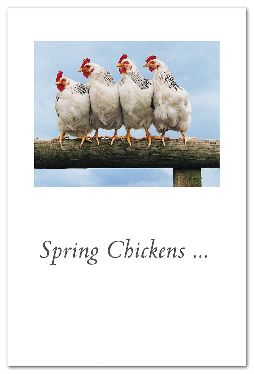 Spring Chickens Birthday Card