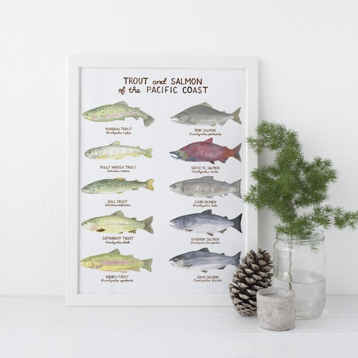 Pacific Trout and Salmon Art Print