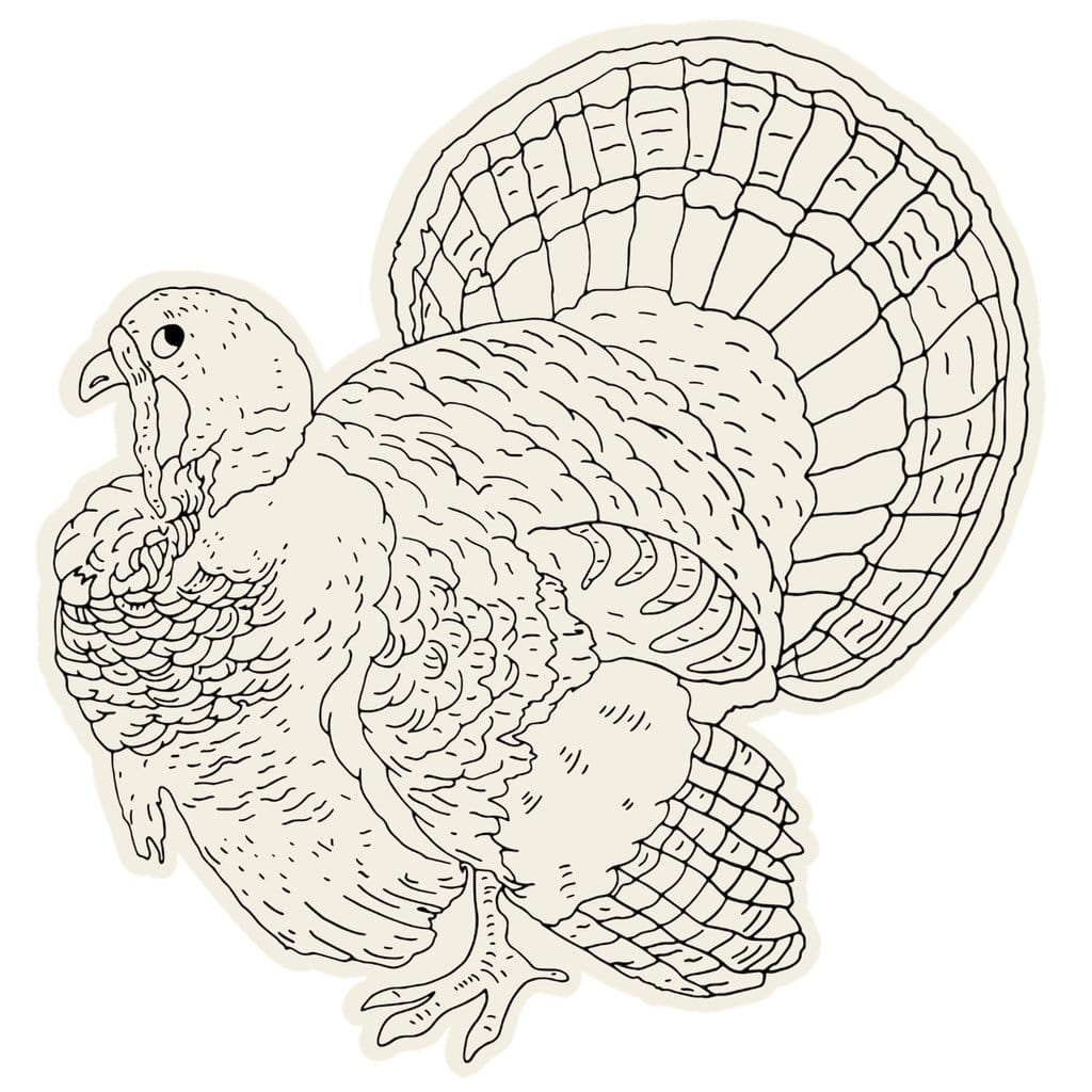 Die-Cut Coloring Turkey Placemats