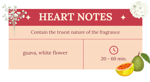 Heart notes of Decadence of love attar, guava and white flower. Contains the truest nature of the fragrance